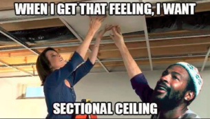 sectionalceiling.PNG